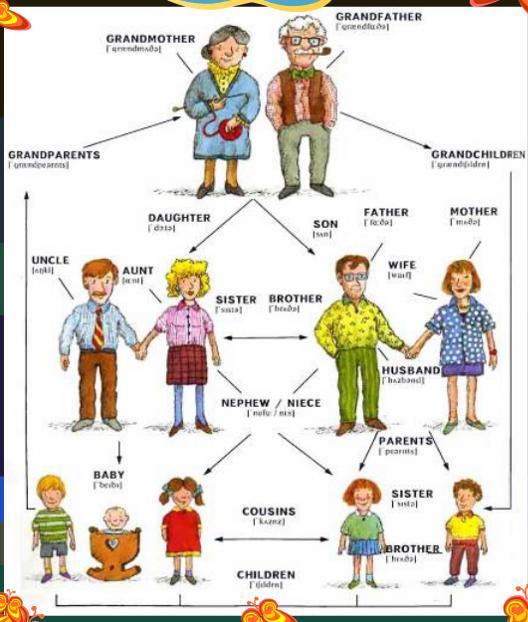 Kids Tree Video