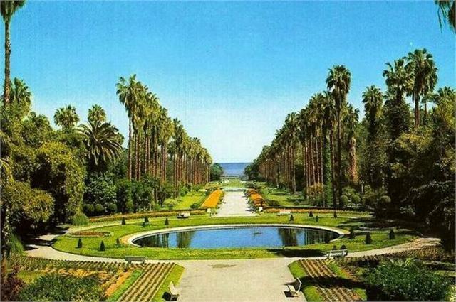 Jardin d 39 essai algerie pearltrees for Jardin d essai alger