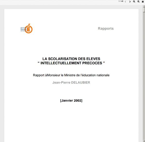 Rapport Delaubier - Janvier 2002
