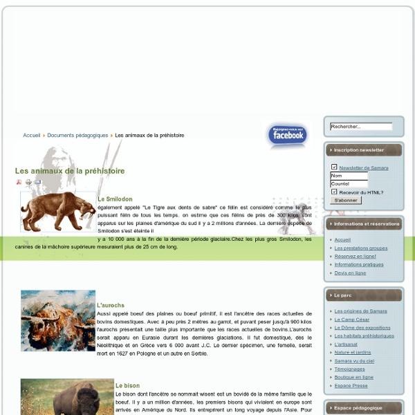 Animaux préhistoire-animaux prehistoire-smilodon-megaceros-mammouth-mégacéros-dent de sabre-aurochs-rennes-renne-bison-bisons