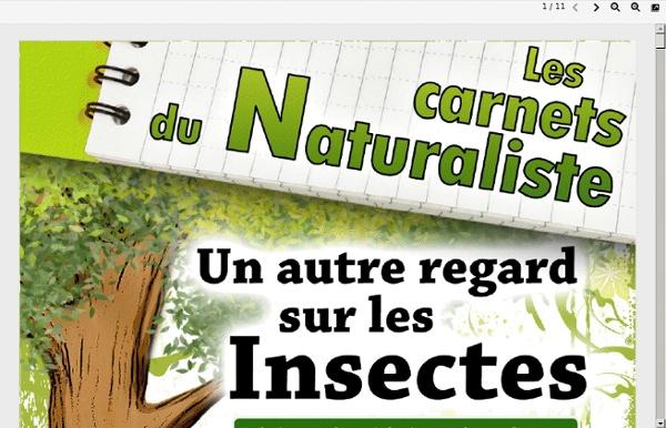 43k8n-carnet_insectes_refuges_2011_v2.pdf