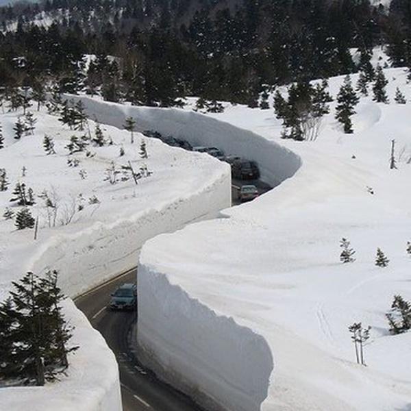 500x_snow.jpg from gawkerassets.com
