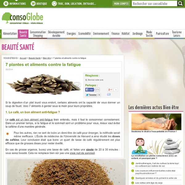 7 plantes et aliments contre la fatigue