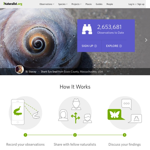 iNaturalist.org · A Community for Naturalists