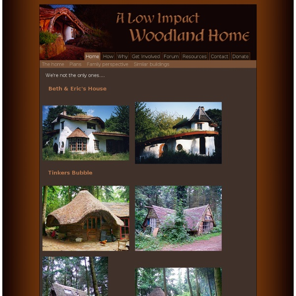 A Low Impact Woodland Home