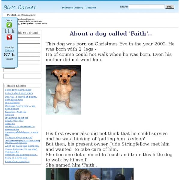 About a dog called 'Faith'..