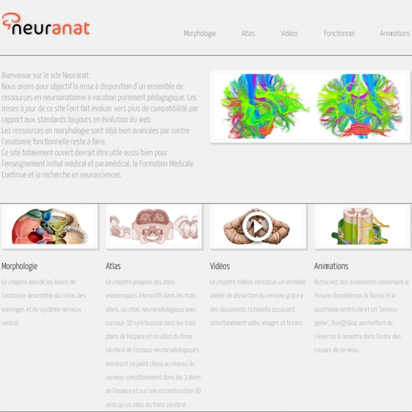 Neuranat : un site de neuroanatomie