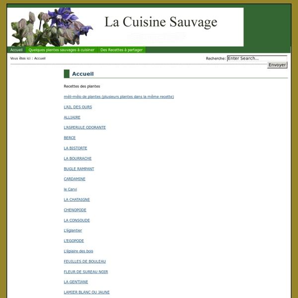 La.cuisine-sauvage.org - Quelques plantes sauvages à cuisiner