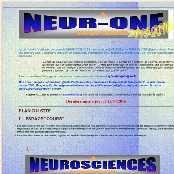 Neur-one