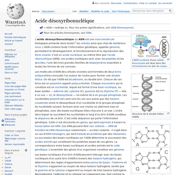 Acide désoxyribonucléique