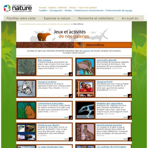 Jeux et activités de la Galerie des mammifères