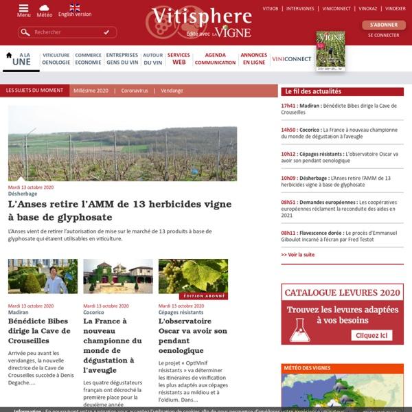 Actualités de la filière Vigne et Vin