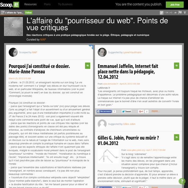 """L'affaire du """"pourrisseur du web"""". Points de vue critiques"""