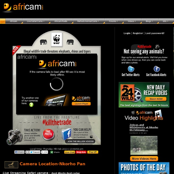 A Live 24x7 Interactive African Wildlife Safari