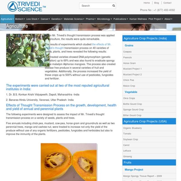 Biofield Effects on Industrial Organic Farming