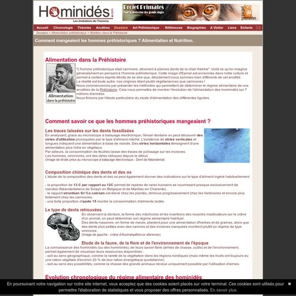 Alimentation - Nutrition - Préhistoire - Préhistorique