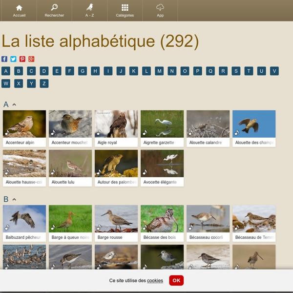 La liste alphabétique des chants d'oiseaux