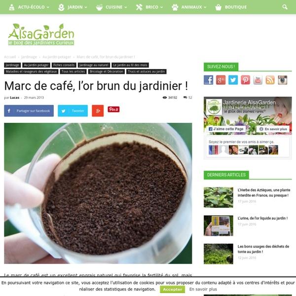 Marc de café, l'or brun du jardinier ! - Blog Alsagarden - Plantes rares, Jardins, Actualités...