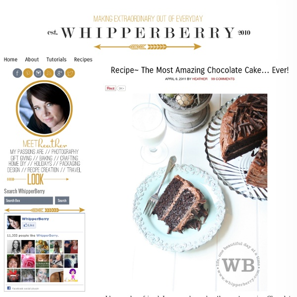 » Recipe~ The Most Amazing Chocolate Cake… Ever! » Whipperberry