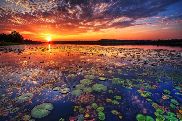 Amazing-sunseat.jpg (960×639)
