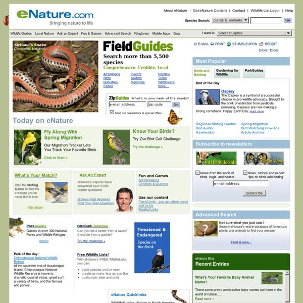 America's Wildlife Resource