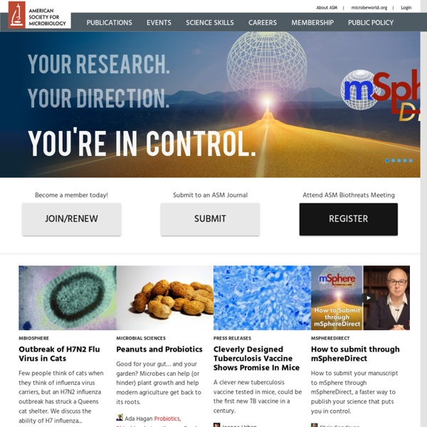 The American Society For Microbiology