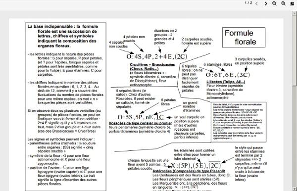 Analyse_florale.pdf