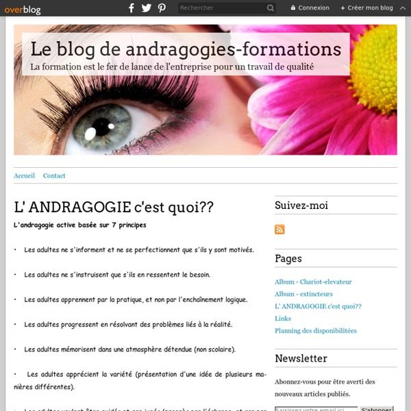 L' ANDRAGOGIE c'est quoi?? - Le blog de andragogies-formations