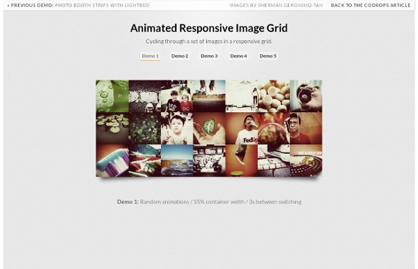 Animated Responsive Image Grid