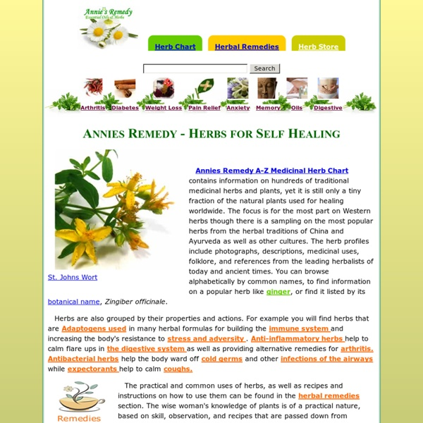 Annie's Remedy Natural Healing Herbs and Oils