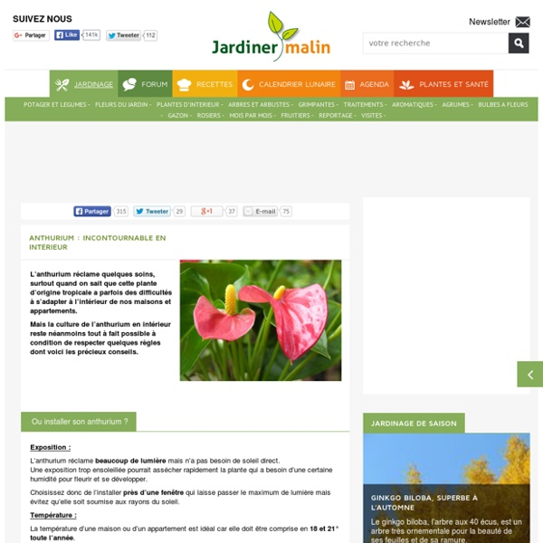 Jardiner malin pearltrees for Www jardiner malin fr