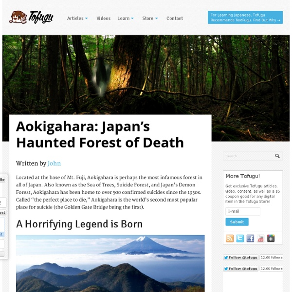 Aokigahara: Japan's Haunted Forest of Death
