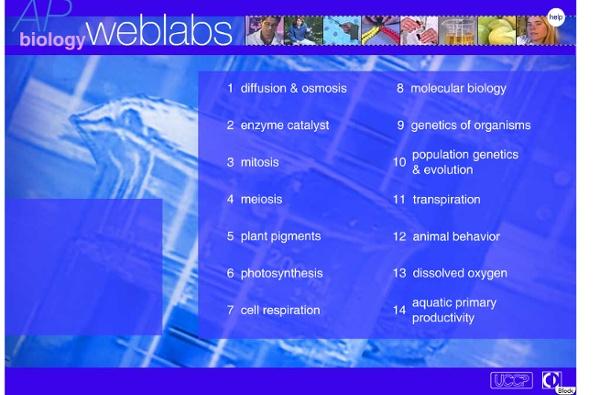 AP WebLabs