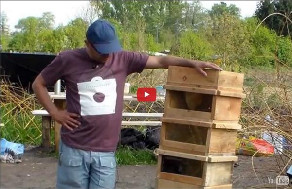 Petits élévages - apiculture naturelle et poulailler