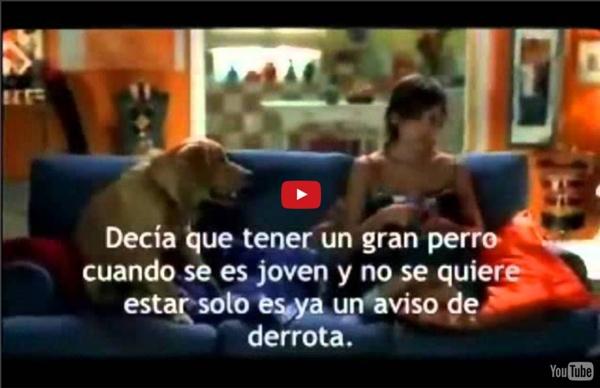 Aprende español con el cine