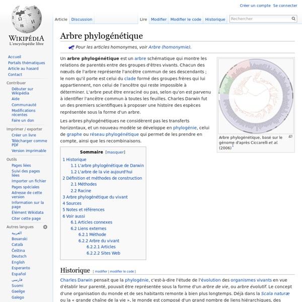 Arbre phylogénétique