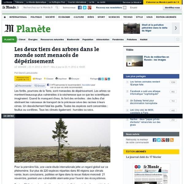 Les deux tiers des arbres menacés de dépérissement