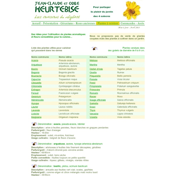 Plantes aromatiques fleurs comestibles pour la cuisine for Plante aromatique cuisine