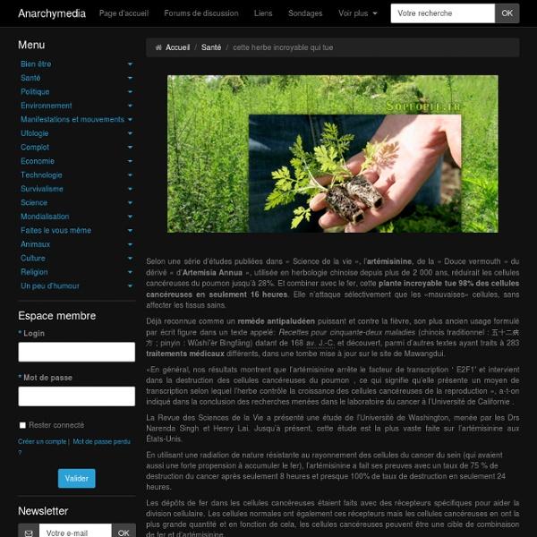 L'artémisinine : cette herbe incroyable qui tue 98% des cellules cancéreuses en seulement 16 heures