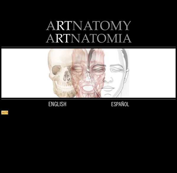 ARTnatomía