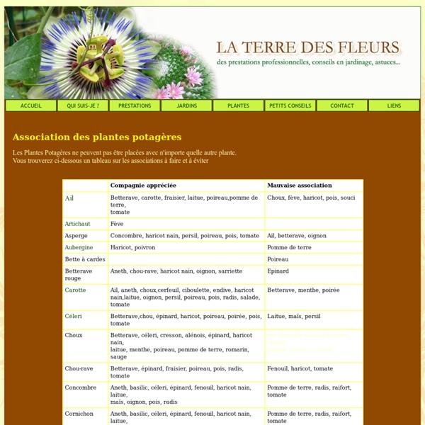 Association des plantes potagères