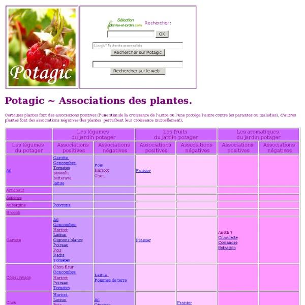 Associations positives/négatives des plantes dans le jardin potager Potagic