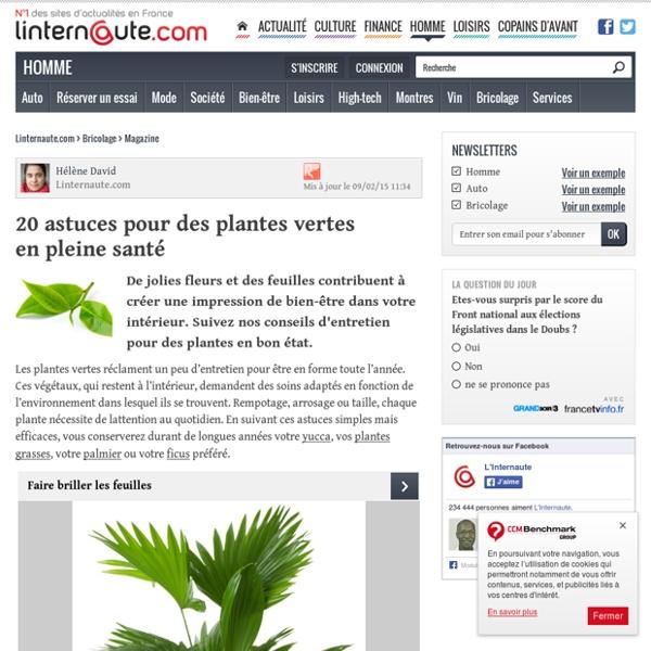 20 astuces pour des plantes vertes enpleine santé