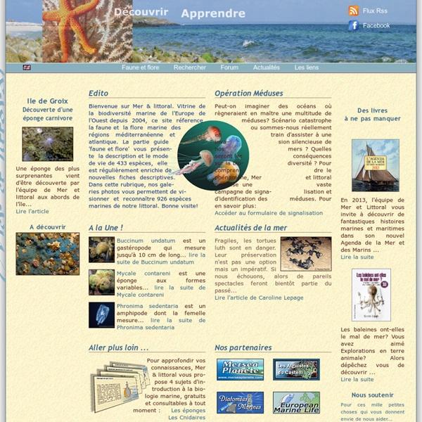 Mer et littoral - Découvrez la faune et la flore marine de l'Atlantique, la Manche, la Mer du Nord, et de la Méditerranée