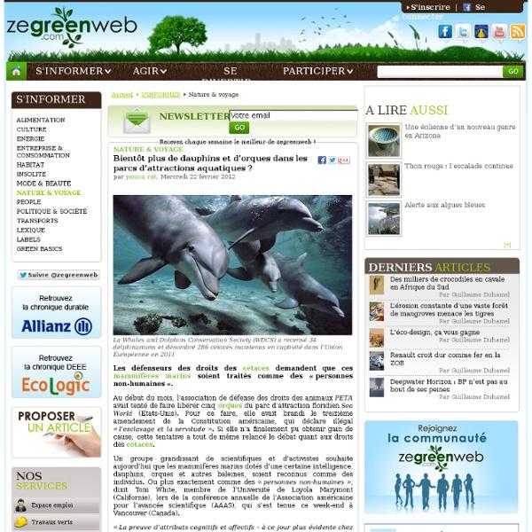 Bientôt plus de dauphins et d'orques dans les parcs d'attractions aquatiques ?