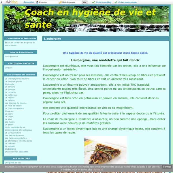L'aubergine - Coach en hygiène de vie et santé
