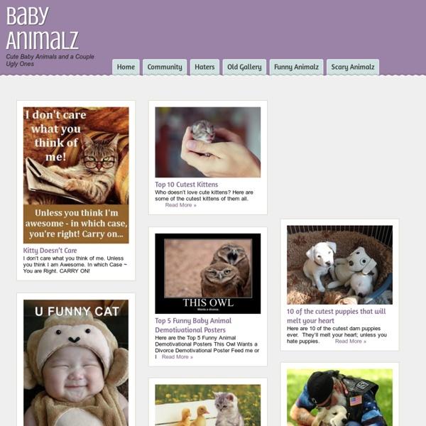 BabyAnimalz.com