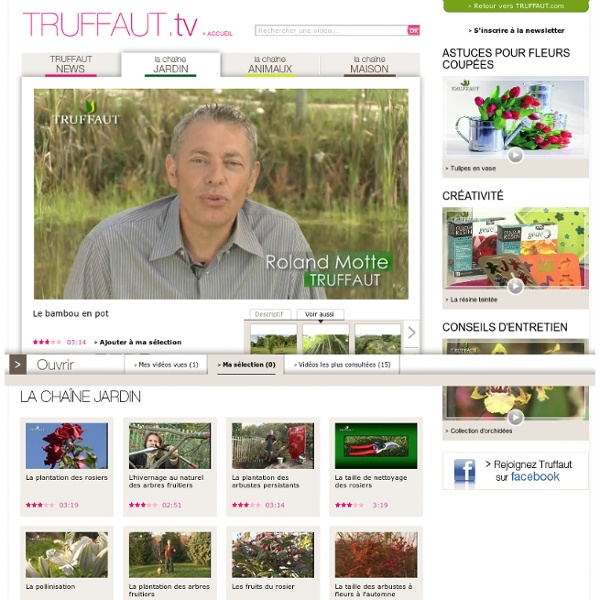 Jardinerie Truffaut : Vidéo Le bambou en pot - Web TV Jardin TRUFFAUT