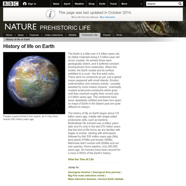 BBC Nature - History of life on Earth