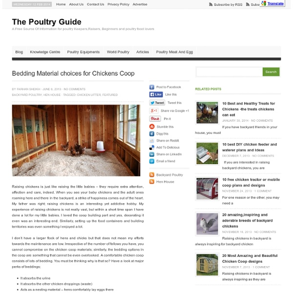 Bedding Material choices for Chickens
